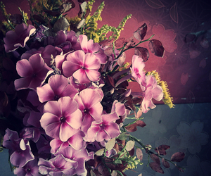 dreamy, flowers, and friend image