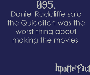 fact, hpotterfacts, and harry potter image