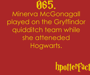 fact, minerva mcgonagall, and harry potter facts image