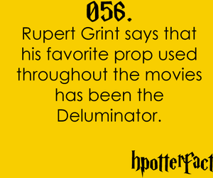 harry potter, hpotterfacts, and harry potter facts image