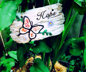 butterfly, color, and hope image