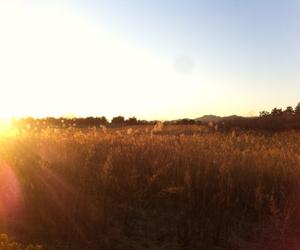 korea, sunset, and busan image