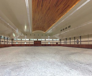 arena, Dream, and equestrian image