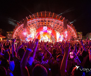 bright, lights, and david guetta image
