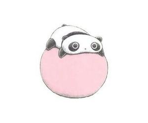 cute, panda, and overlay image