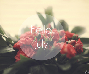 flowers, july, and roses image
