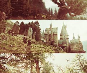 harry potter, hogwarts, and buckbeak image