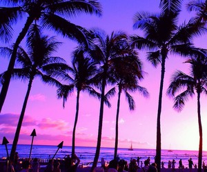 beach, summer, and purple image