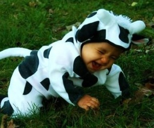 costume, cow, and cute image