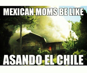 funny and mexican moms image