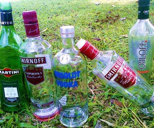 bottle, absolut, and drinks image