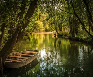 boat, nature, and forest image