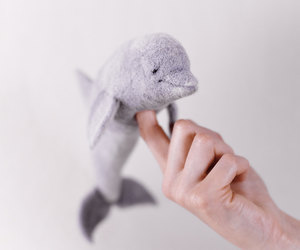 dolphin, lilac, and puppet image