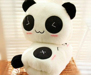 kawaii, lovely, and panda image