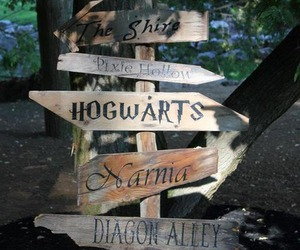 harry potter, narnia, and harrypotter image