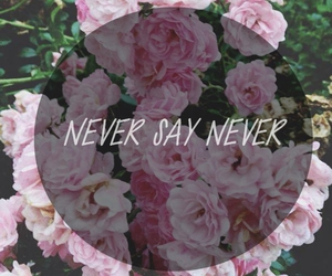 never say never image