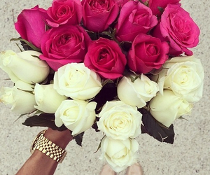 heart shaped, roses, and white image