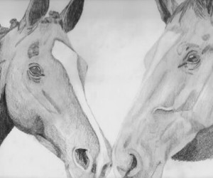 drawing, horses, and i image