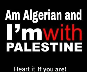 heart, fraternity, and فلسطين image
