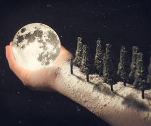 moon, tree, and hand image