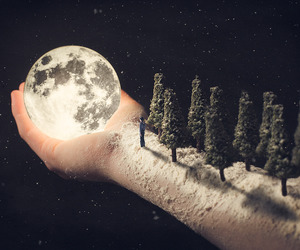 moon, tree, and hand image