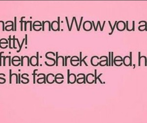 best friend, funny, and shrek image