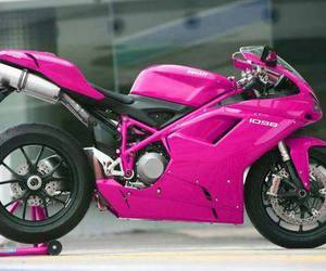pink, pink color, and pink moto image