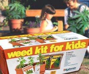 weed, kids, and kit image