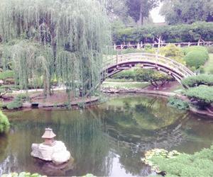 bridge, nature, and peace image