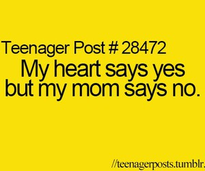 true, funny, and teenager post image