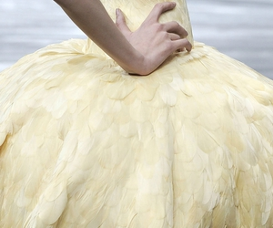 fashion, feathers, and Alexander McQueen image