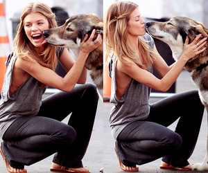 90210, dog, and AnnaLynne McCord image