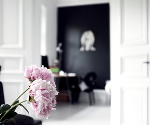 flowers, interior, and peonies image