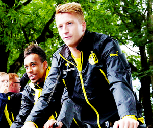 marco reus, bvb, and germany image