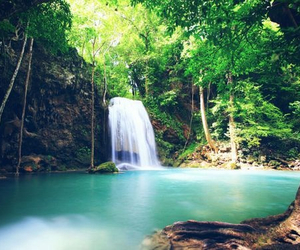 water, paradise, and falls image