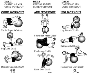 tips, body, and exercise image