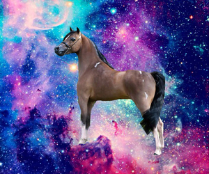 galaxy and horse image