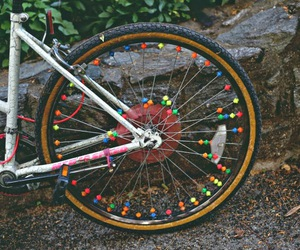 bike, color, and floral image