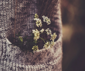 beautiful, flowers, and soft grunge image