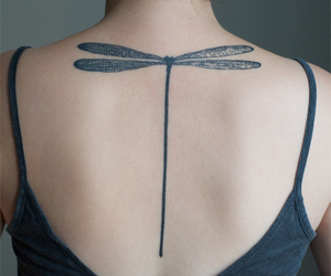 tattoo, dragonfly, and back image
