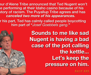 pedophile, racism, and ted nugent image