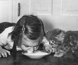 cat, girl, and milk image