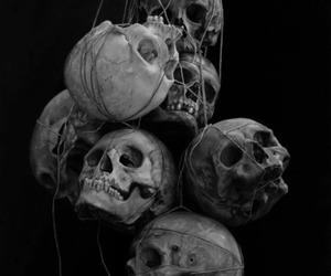 skull, black and white, and dark image