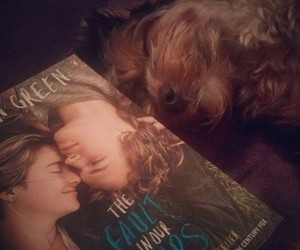 book, john green, and yorkshire image