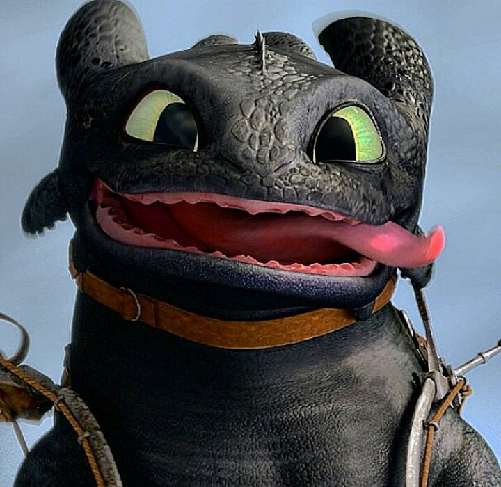 43 Images About Dragon O On We Heart It See More About How To Train Your Dragon Toothless And Hiccup