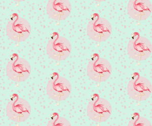 wallpaper, flamingo, and pink image