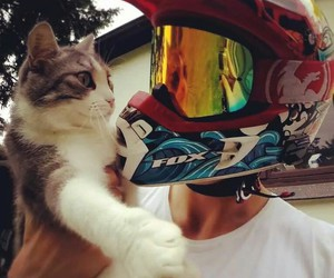 cat, motocross, and grenzgaenger image
