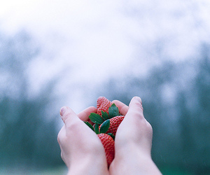 strawberry, hands, and vintage image