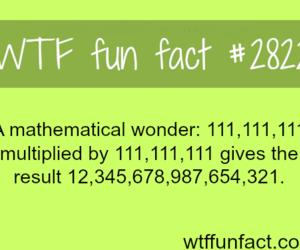 couple, lol, and math image