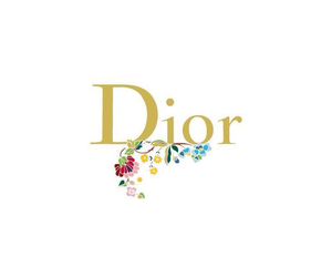background, iphone, and dior image